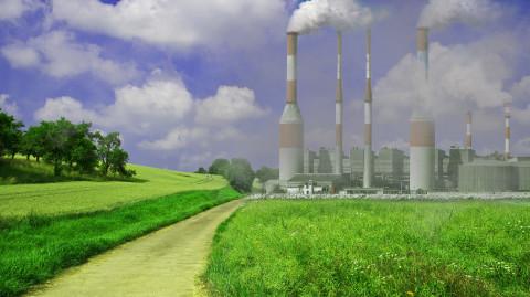 """Как """"мусорные"""" операторы борются за экологию?"""